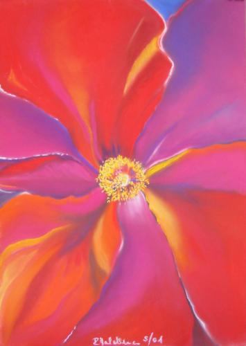2001 Offene Rose