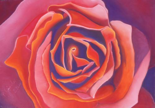 2010 Rose
